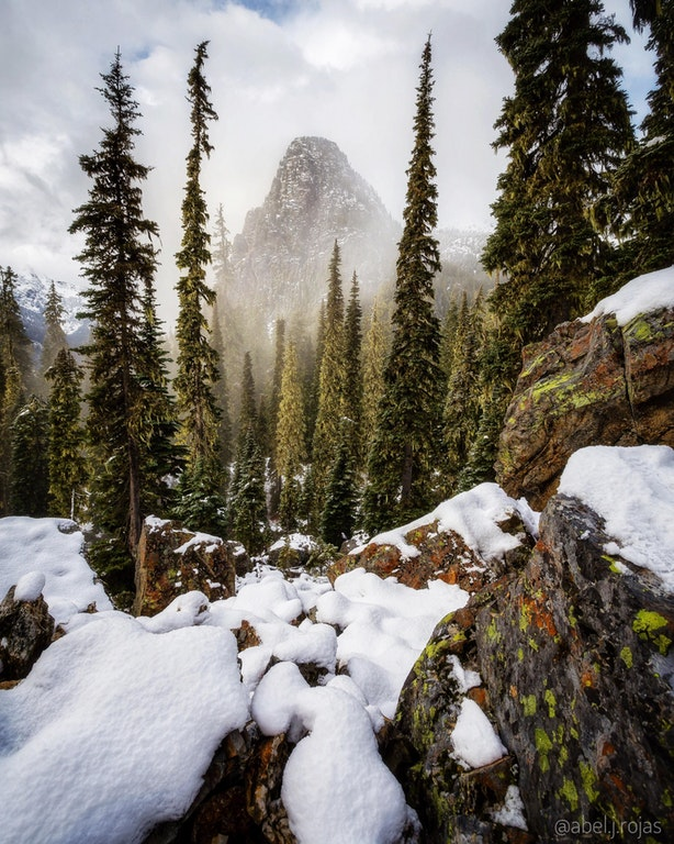 A Giant In The Mist Along The Pacific Crest Trail, Snoqualmie Pass, WA - walkingaswind - http://bit.ly/2mFZeNj