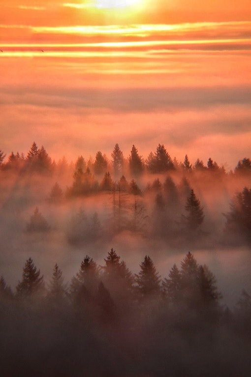 Sunrise above a layer of fog in the willamette valley of Oregon - brandjohns - bit.ly2FD3uC6