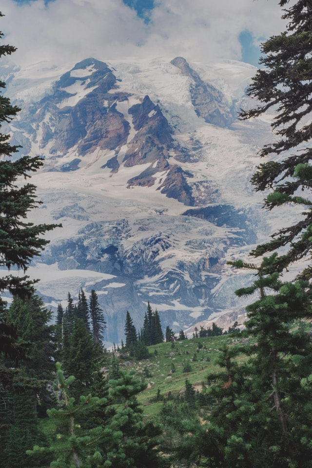First visit to Mt. Rainer. It's so massive it doesn't look real - TheAnxiousFox - bit.ly2KQxD2V