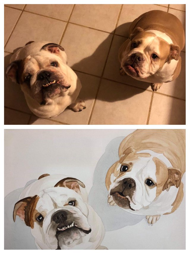 Had a friend paint my dogs. She absolutely nailed it