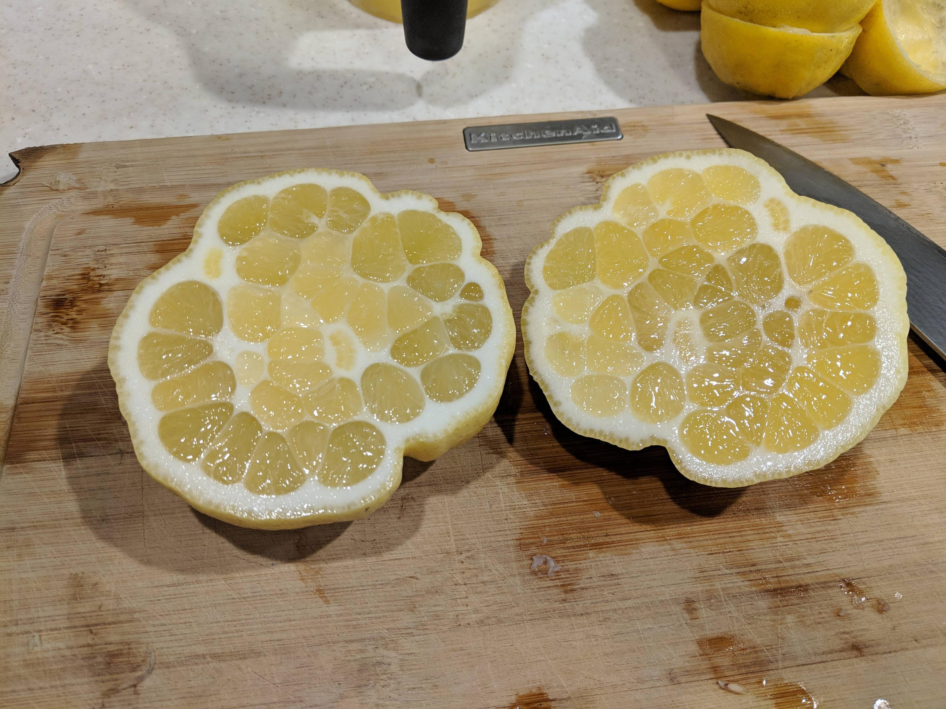 The inside of this lemon from my backyard