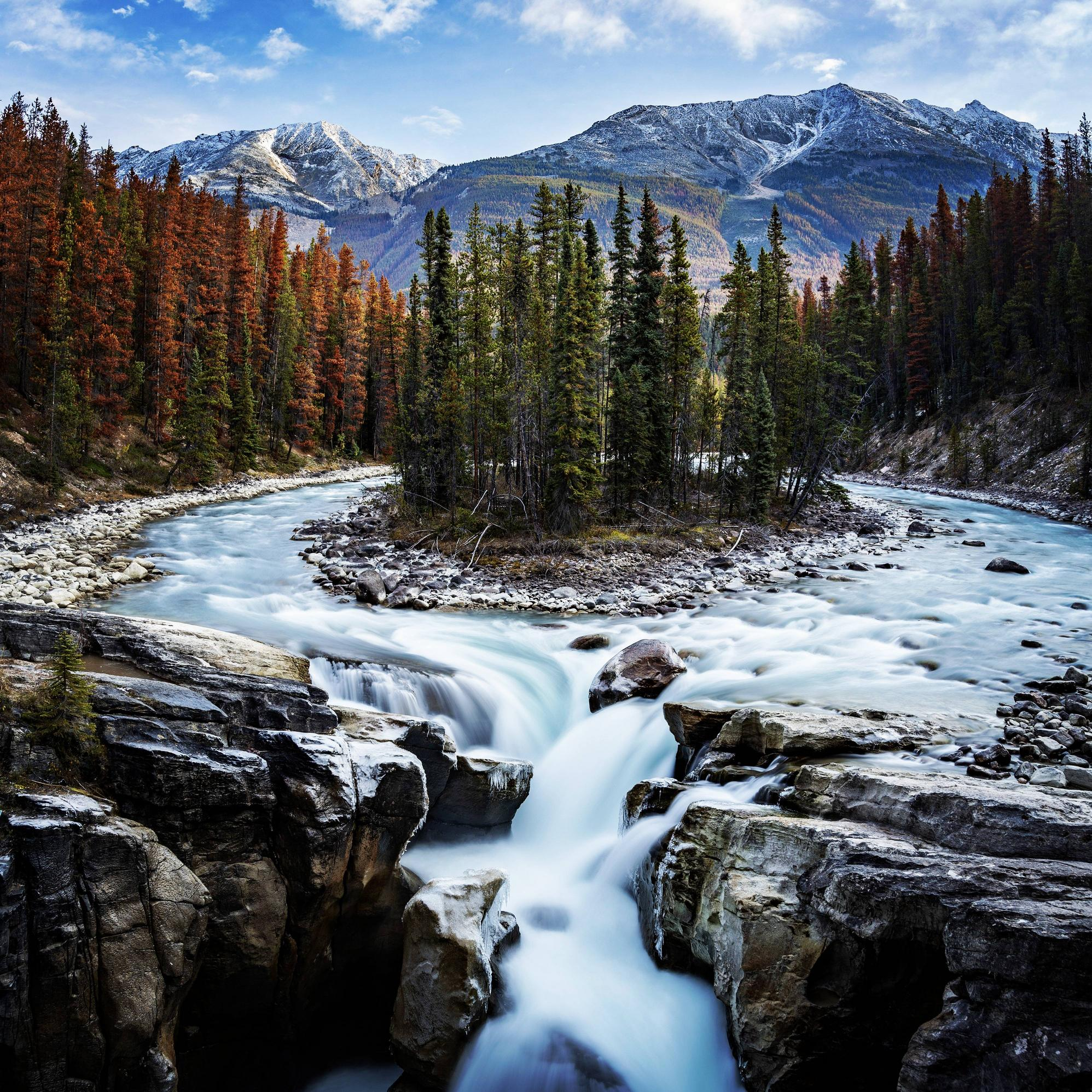 Fall in Jasper National Park