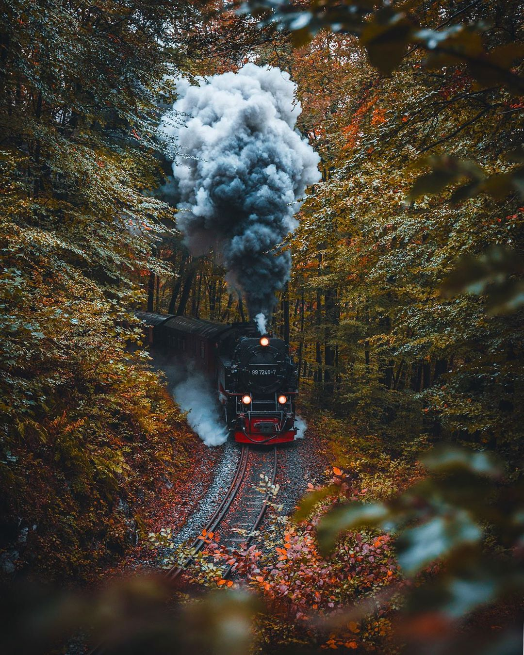 Train passing through Harz National Park
