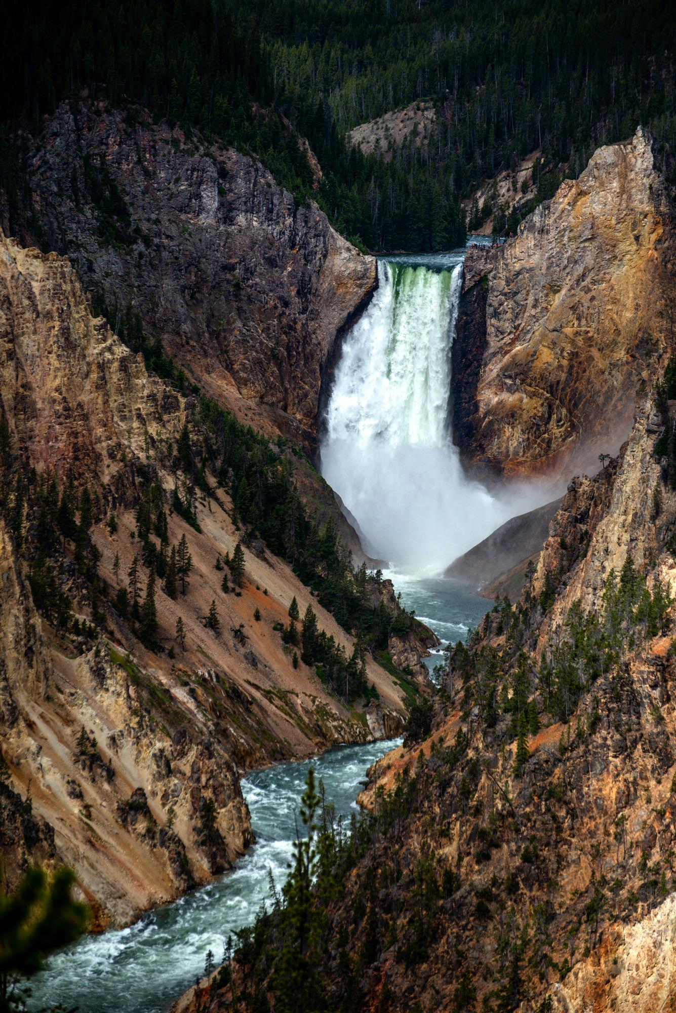 The spectacular Grand Canyon of the Yellowstone just after a morning storm rolled through