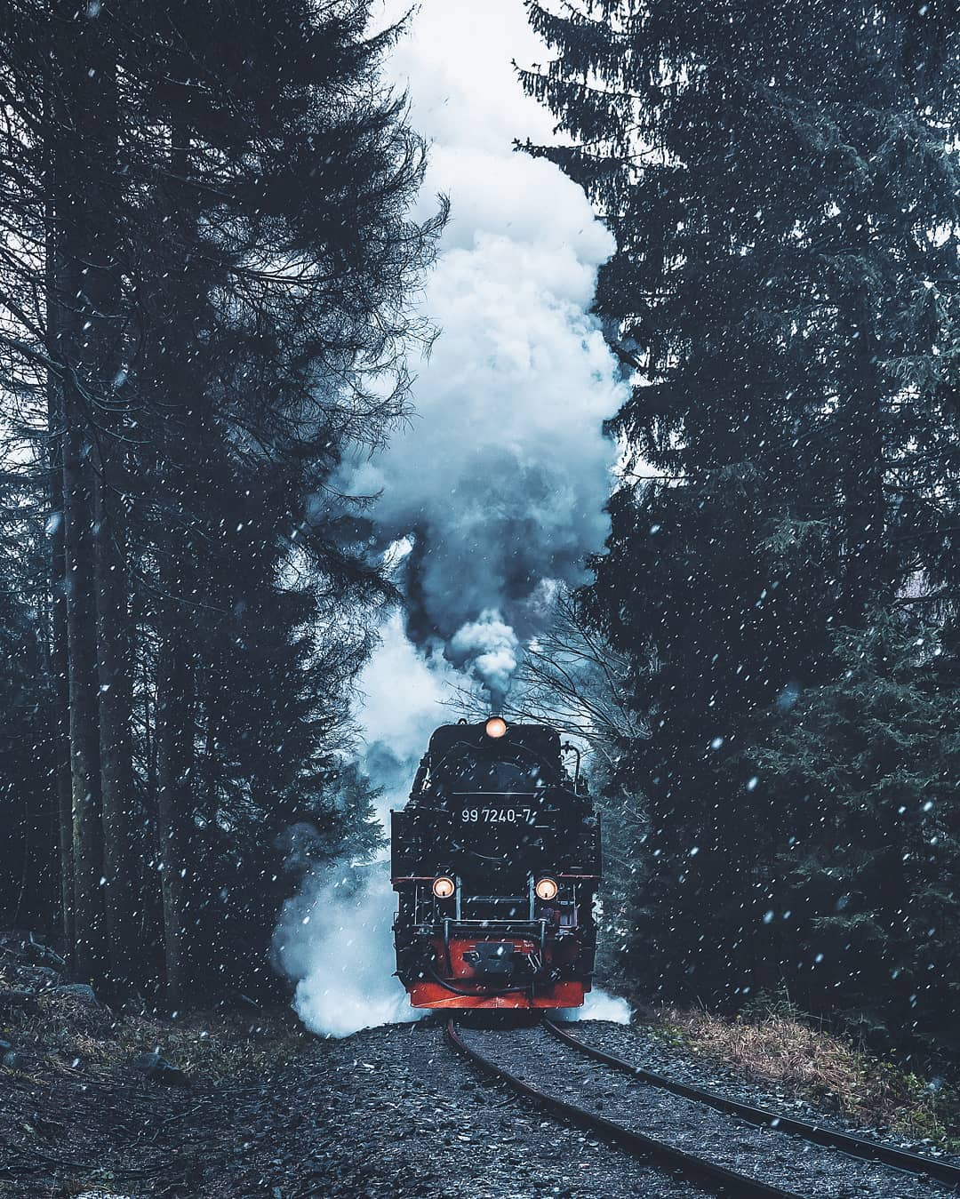 Train in Harz National Park, Germany