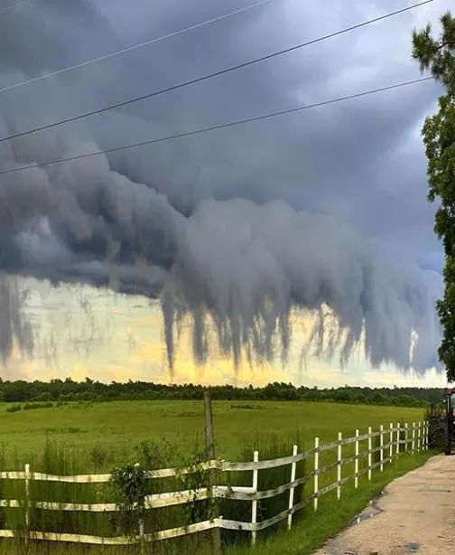 These creepy looking clouds are called scud clouds