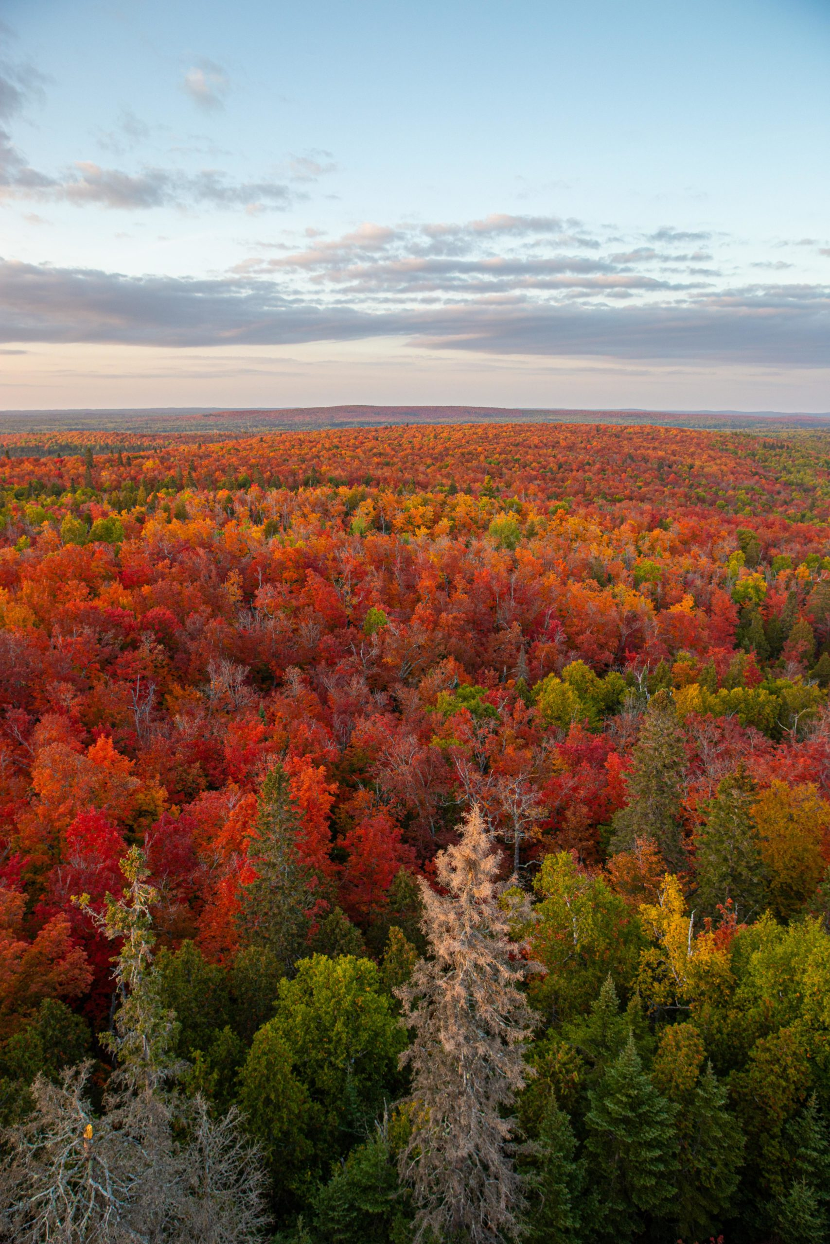 Fall colors at sunset over Minnesota