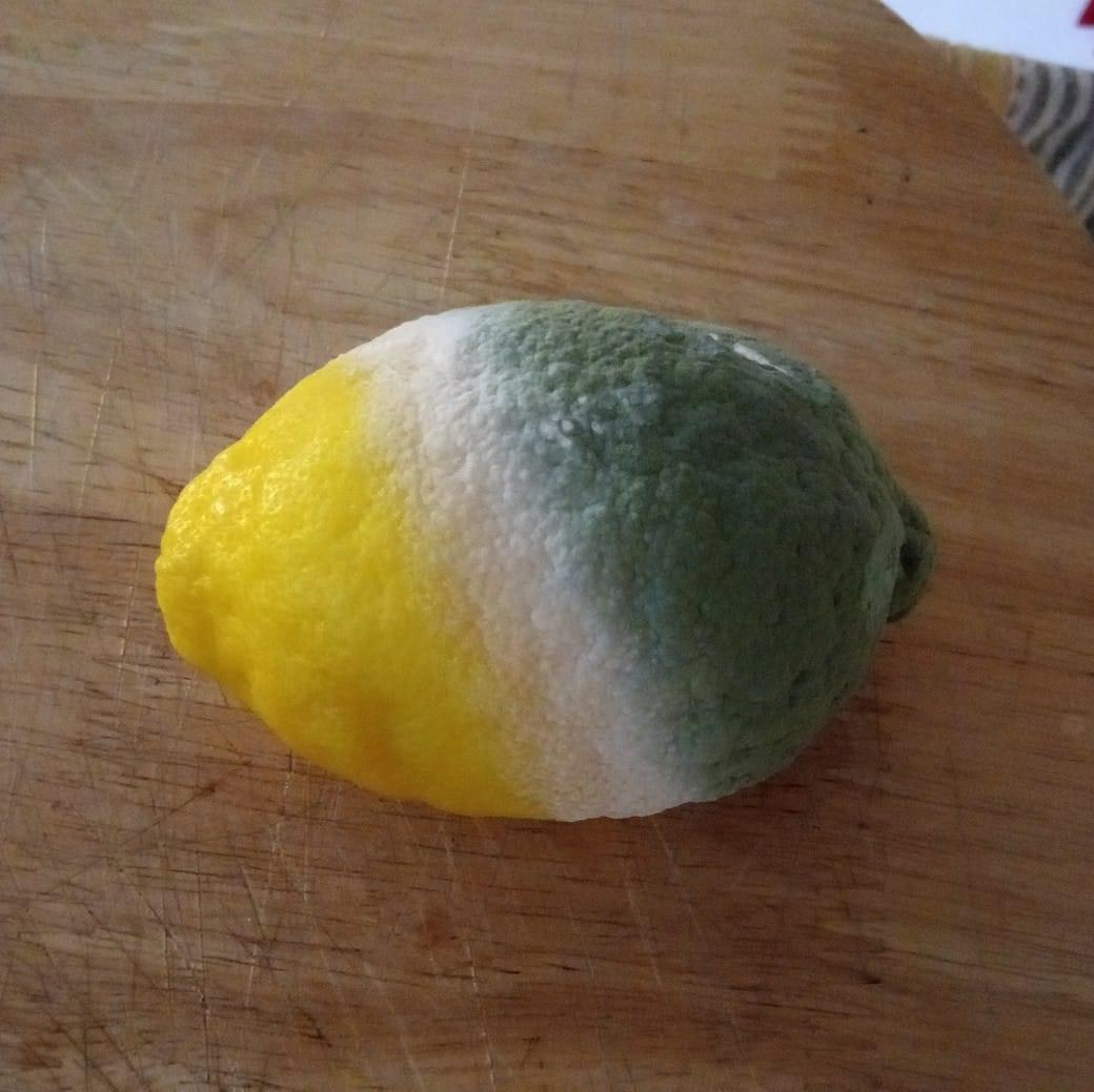Mouldy lemon looks like an old Sprite logo