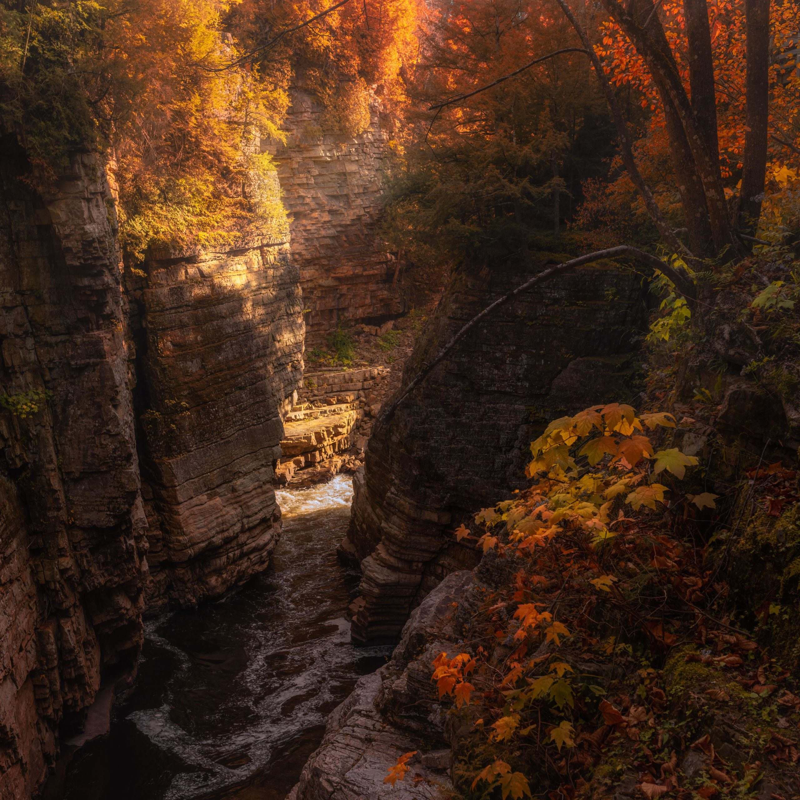 From an autumn hike into Ausable Chasm, New York